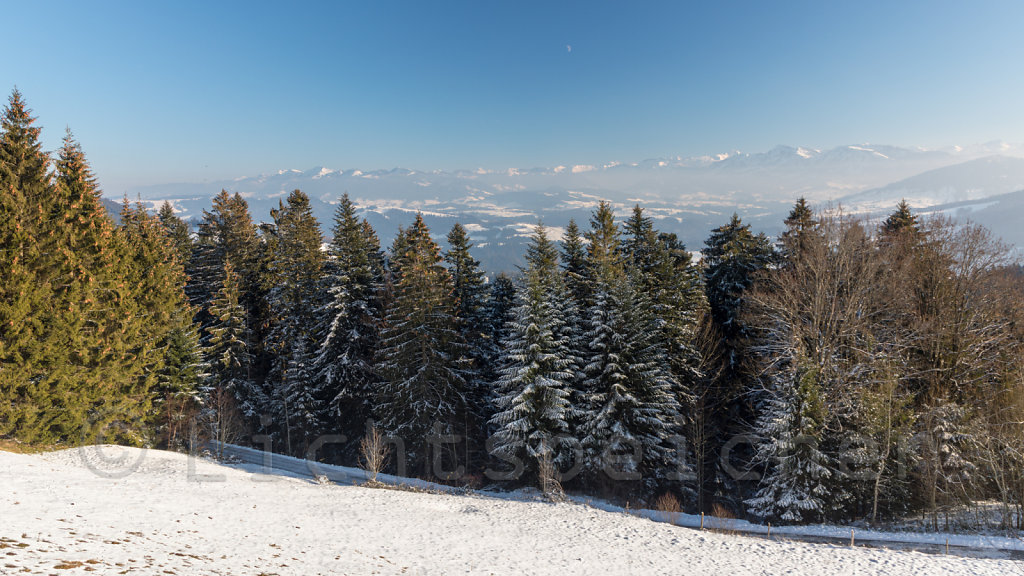 Bregenzerwald / Vorarlberg